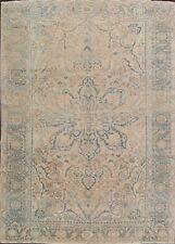 Antique Muted Pale Peach 9x12 Geometric Heriz Area Rug Distressed Color Carpet