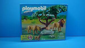 Playmobil 5903 Safari Animals Lions  skeleton NEW IN BOX toy zoo