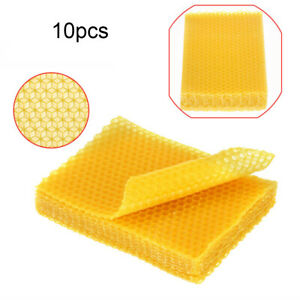 10PCS/Set Beeswax Honeycomb foundation Beekeeping Bee Wax Bed Base Frames Sheets