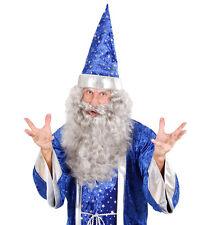 Wizard maxibart Deluxe NEW - Carnival Beard Costume