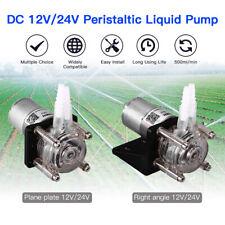 1pcs Tragbar 12V/24V Groß Durchfluss Dosierung Pumpe Für Vakuum Aquarium Labor