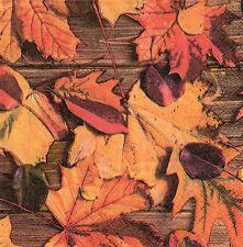 4 Servietten Motivservietten Serviettentechnik Herbst Herbstblätter (1345)