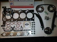 CITROEN RELAY 2.2 HDi 2006-2014 NEW TIMING CHAIN KIT + HEAD GASKET SET & BOLTS
