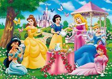 Disney Princess Fairies Bedroom Decal Wall View Sticker Poster Vinyl Mural 37a