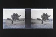 Photo amateur Plaque stéréo NÉGATIF 45x107mm ca 1920