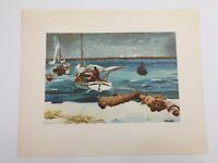 "The Metropolitan Museum of Art Water Colors by Winslow Homer ""Nassau"" Print"