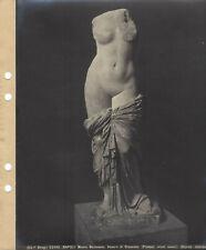 Brogi 22492. NAPOLI Museo Nazionale. Venere di Sinuessa (Pompei, scavi nuovi)