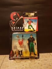 Batman The Animated Series: Dick Grayson/Robin