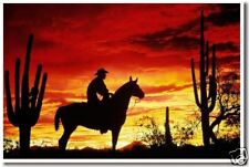 Sunset Cowboy - Desert Horse Animal Print    NEW POSTER