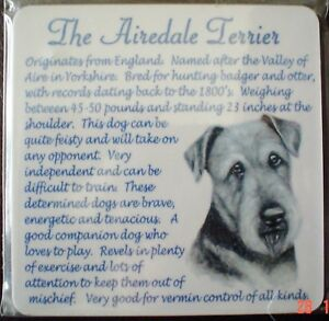 Lovely Airedale Terrier Coaster