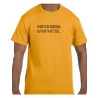 Funny  Tshirt I Used To Be Indecisive But Now I am Not Sure…. Short/Long Sleeve