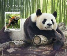 Central Africa - 2019 Pandas - Stamp Souvenir Sheet - CA190207b