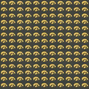 "University of Iowa Hawkeyes BLACK NCAA Scrapbook Paper 12x12"" Sports Solution"