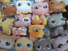 Littlest Pet Shop Set Lot of 3 RANDOM Persian Kitten Cats Authentic + Gift Bag!