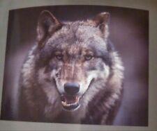 Wolf Over Sized Luxury Fleece Blanket 60 x 80 * Brand New * Bedford Home