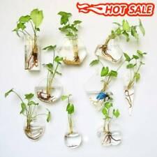 Wall Hanging Glass Irregular Planter Air Terrarium Flower Pots Vase