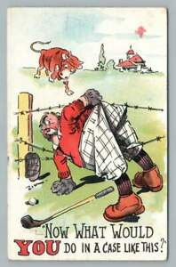 Golfer Caught in Barbed Wire Antique Zim Golfing Comic Postcard Cow Farm 1911
