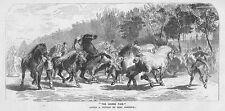 ROSA BONHEUR The Horse Fair - Antique Print 1859