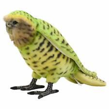 *Fluffy's stuffed parrot green