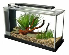 @ Fluval Spec 19L - Black Desktop Glass Aquarium LED High-Output Light Fish Tank