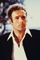 James Caan Movie Poster Thief 11x17 Mini Poster
