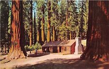 California postcard Yosemite National Park Mariposa Grove of Big Trees cabin