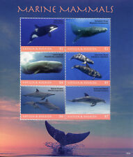Antigua & Barbuda 2018 MNH Marine Mammals Whales & Dolphins 6v M/S Stamps