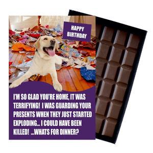 Golden Lab Yellow Labrador Birthday Card for Dog Lover Gift Idea 100g Chocolate
