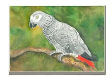 More details for african grey parrot print from watercolour a4 a3 matte or gloss mothers day gift