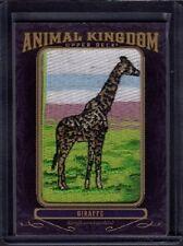 2012 Giraffe Upper Deck Goodwin Champions Animal Kingdom Patch AK-104