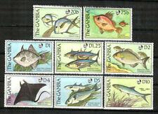 Gambia Stamp - Fish Stamp - NH