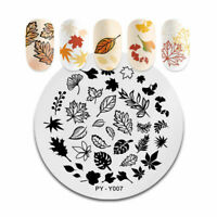 Nail Art Stamping Plate Image Decoration Winter Fern Leaf Flowers Fall (PYY007)