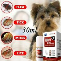 Flea Spray Flea and Tick Spot On Treatment For Kitten Cat or Small Dog Pu CL