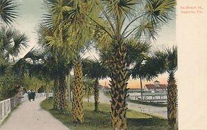 DAYTONA FL – South Beach Street – udb (pre 1908)