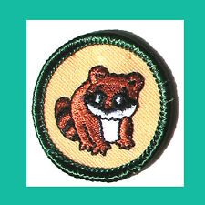 WILDLIFE Jr. Jade Girl Scout BADGE NEW Patch Raccoon Cute Critter Combine