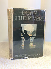DOWN THE RIVER By Roscoe W. Brink- 1922 1st ed. free-verse novel, in dj