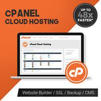 Unlimited domains Wordpress SSD website hosting cPanel Web Hosting 24m plane