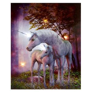 Magical Canvas Picture - LED / Light up - 25cm x 20cm - Choose Design