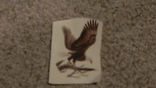 Ceramic Decal Eagle 3.5 x2.5