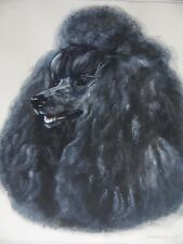 Portrait of  Black Poodle Dog, Leon of Olster. Gouache B.Olenrenshaw. Listed.