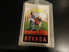 Vintage Nevada   Water Slide  Travel Decal