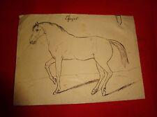ANONYME - Cheval espagnol.