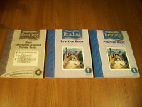 3 Lot Houghton Mifflin Reading Theme Tests & Reading Practice Books LN 111-3D
