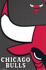 CHICAGO BULLS - 2014 LOGO POSTER - 22x34 NBA BASKETBALL 13761