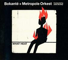 Bokanté & Metropole Orkest Jules Buckley - What Heat (NEW CD)
