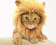 NEW Prymal Lion Mane Dog Cat Costume FREE SHIPPING