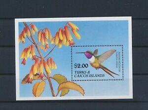 LO44255 Turks & Caicos animals fauna flora birds good sheet MNH