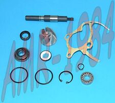 KIT REVISIONE POMPA ACQUA H2O HONDA FORESIGHT 250 4T 1998 1999  AA00814