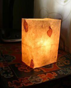 Lokta Paper Luminary Bags, Candle Bags, Lantern Bags, Tea Light Bags(5 packs)