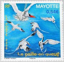 MAYOTTE 2006 193 229 Tropic Birds tropische Vögel Fauna Nature MNH